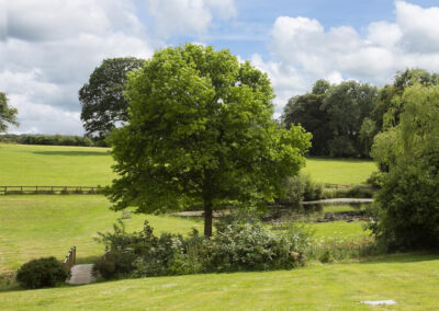 The garden & pond at Colleton East Wing, Rackenford