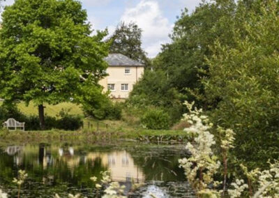 The pond at Colleton East Wing, Rackenford