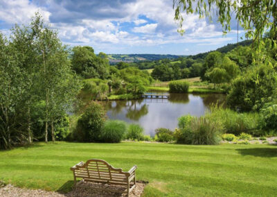 The garden & pond at Raleigh Estate, Combe Raleigh